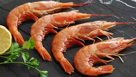 US imposing non-tariff barrier by including shrimps in its Seafood Import Monitoring Program